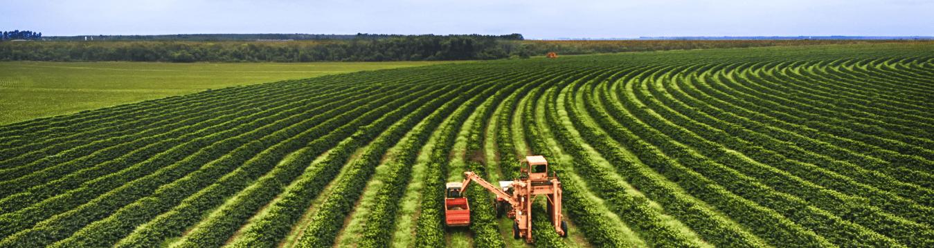 Lubrifianti Agricultura - cover